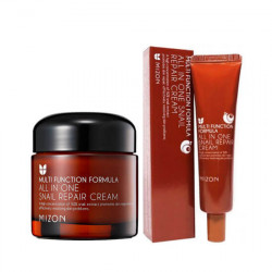 Mizon All in One Snail Repair Cream 92% Snaii 120m