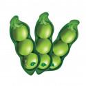 PhytoTree Get It Bean Mask