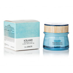 THE SAEM ICELAND AQUA MOIST CREAM