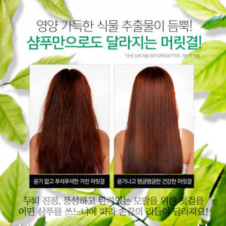 CP-1 Daily Moisture Natural Shampoo